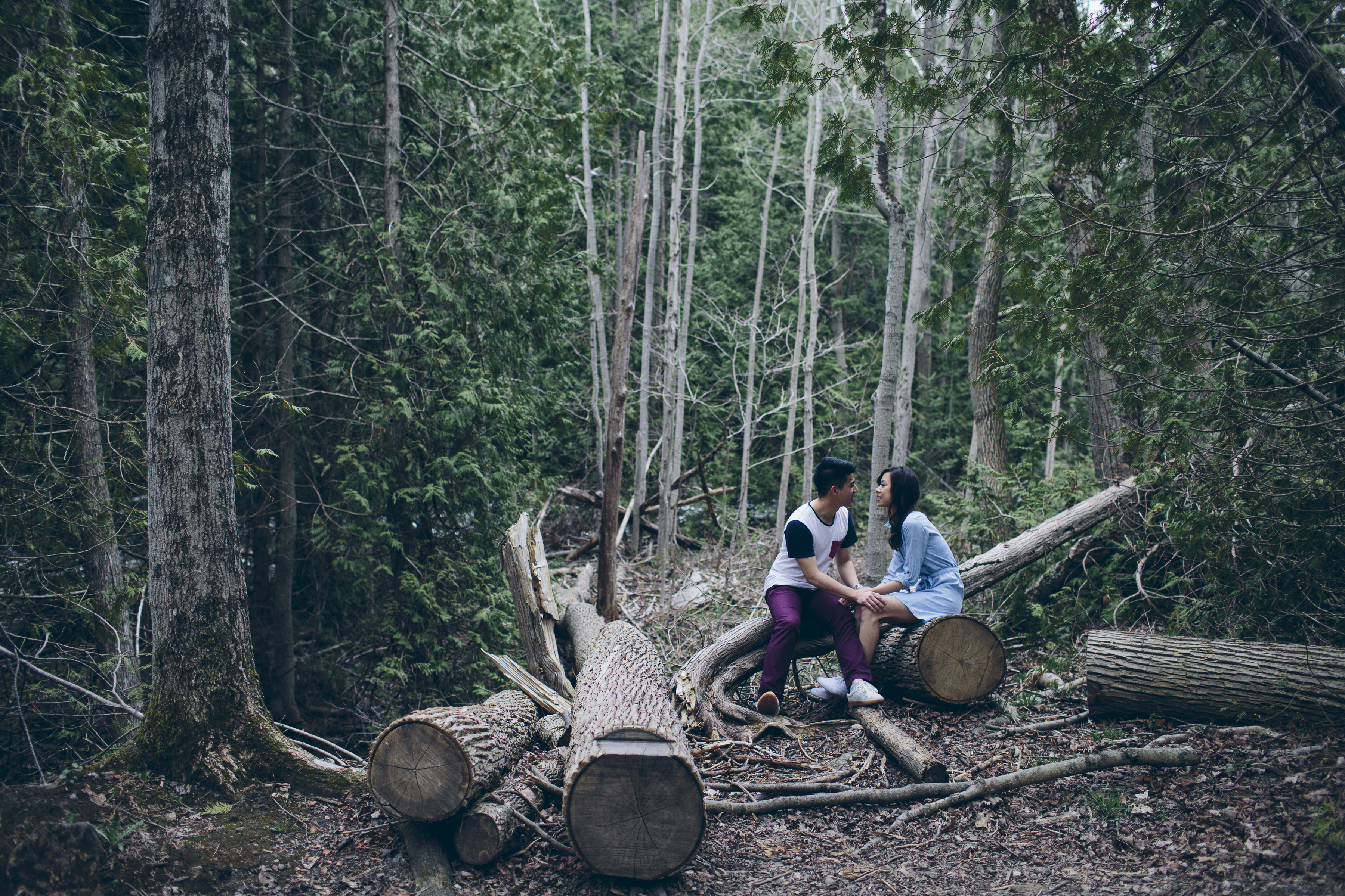 Belfountain Conservation Area engagement session