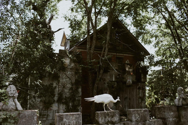 Screaming Heads Bird Castle